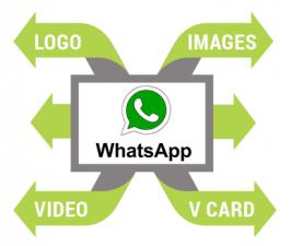 Whatsapp Marketing Ahmedabad